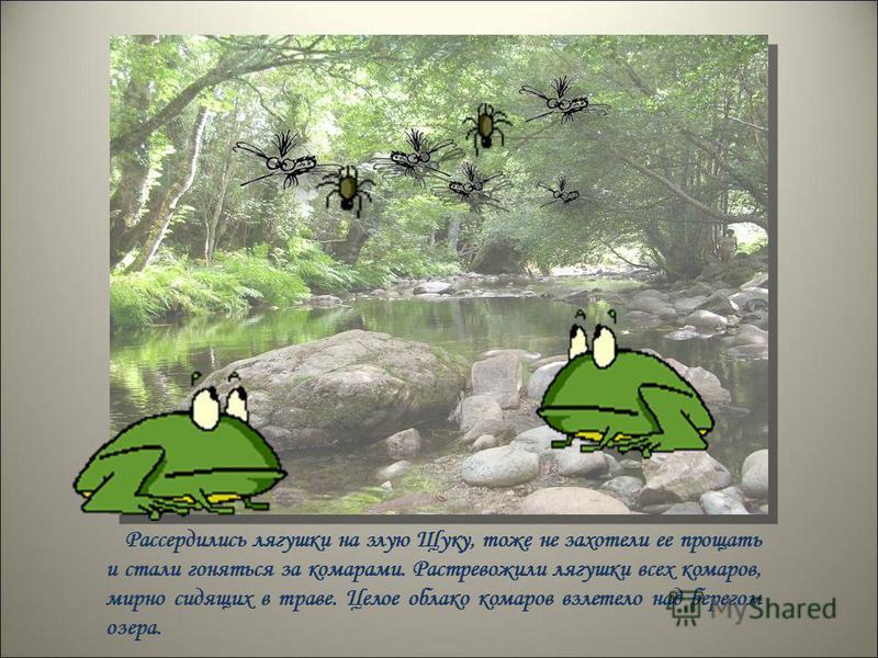 Рассердились лягушки на злую Щуку, тоже не захотели ее прощать и стали гоняться за комарами. Растревожили лягушки всех комаров, мирно сидящих в траве. Целое облако комаров взлетело над берегом озера.