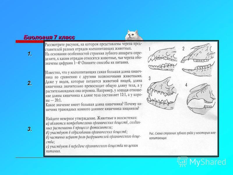Биология 7 класс 1. 2. 3.