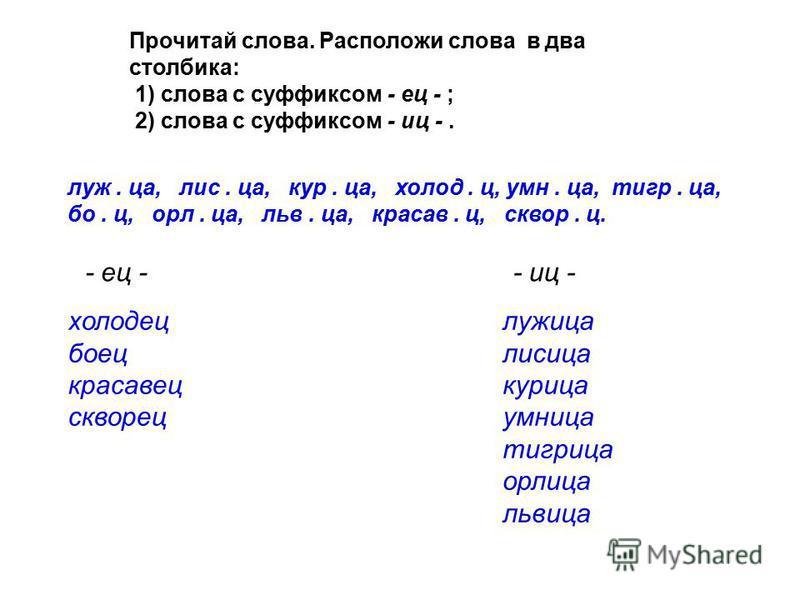 Прочитай слова. Расположи слова в два столбика: 1) слова с суффиксом - ец - ; 2) слова с суффиксом - иц -. луж. на, лис. на, кур. на, холод. ц, умн. на, тигр. на, бо. ц, орле. на, льва. на, красав. ц, сквер. ц. - ец - - иц - холодец боец красавец скв