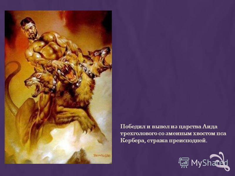 Победил и вывел из царства Аида трехголового со змеиным хвостом пса Кербера, стража преисподней.