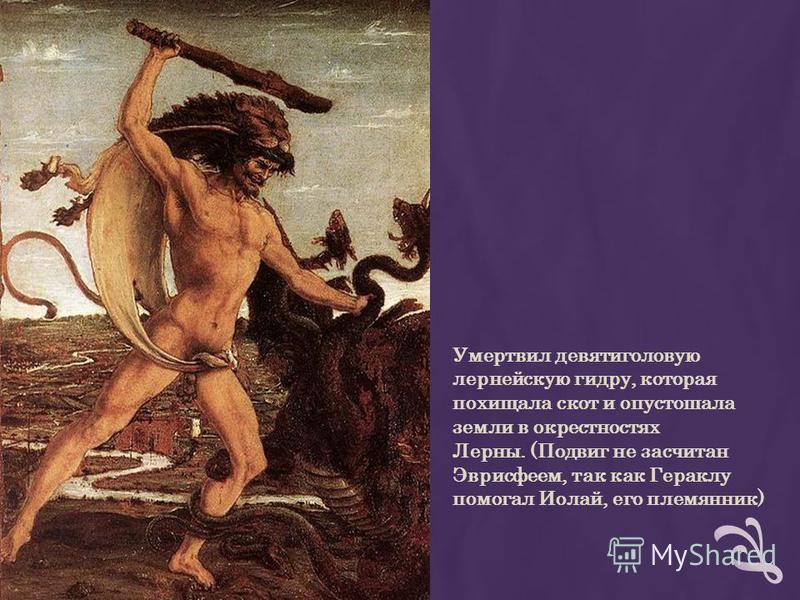 Умертвил девятиголовую лернейскую гидру, которая похищала скот и опустошала земли в окрестностях Лерны. (Подвиг не засчитан Эврисфеем, так как Гераклу помогал Иолай, его племянник)