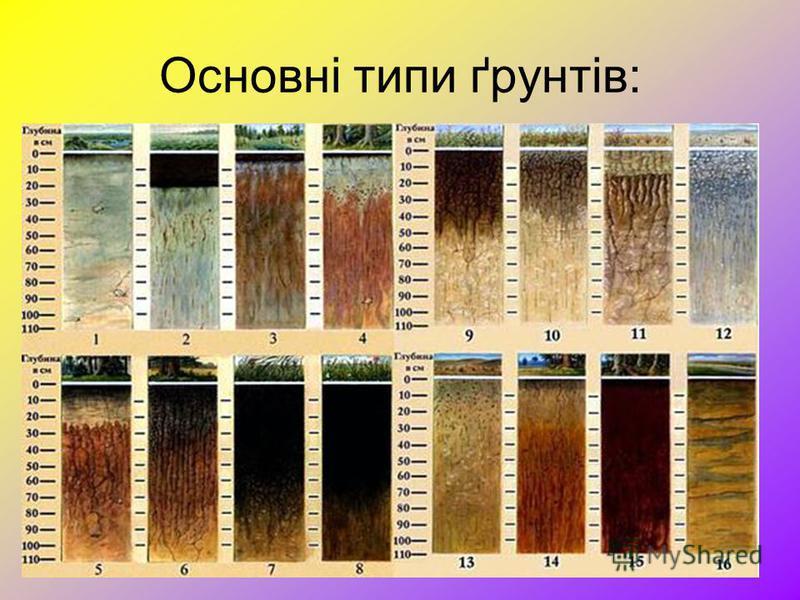 Основні типи ґрунтів: