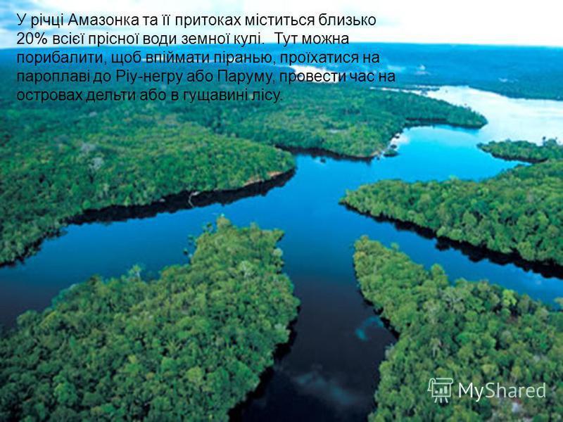 У річці Амазонка та її притоках міститься близько 20% всієї прісної води земної кулі. Тут можна порибалити, щоб впіймати піранью, проїхатися на пароплаві до Ріу-негру або Паруму, провести час на островах дельти або в гущавині лісу.