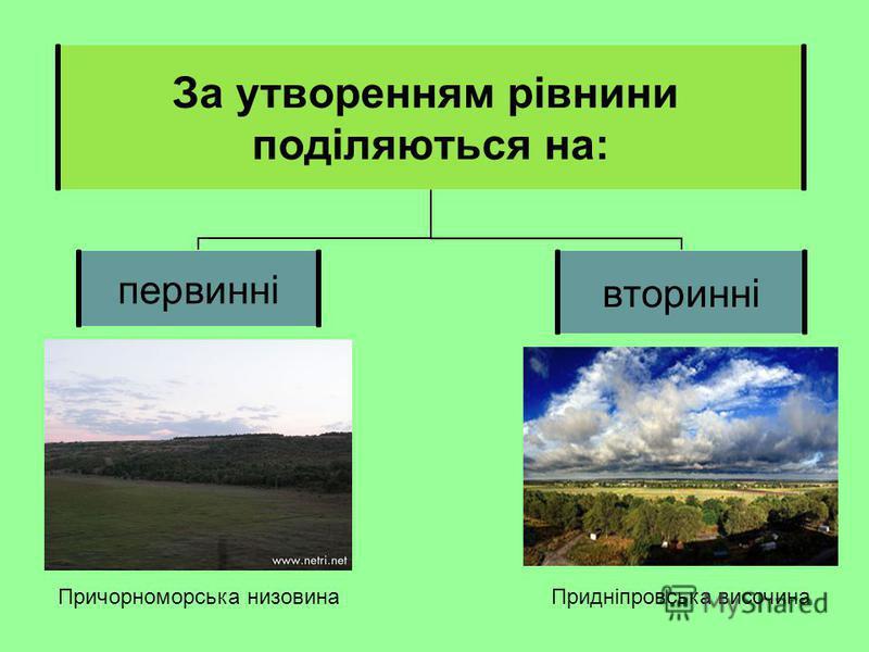 За утворенням рівнини поділяються на: первиннівторинні Причорноморська низовинаПридніпровська височина