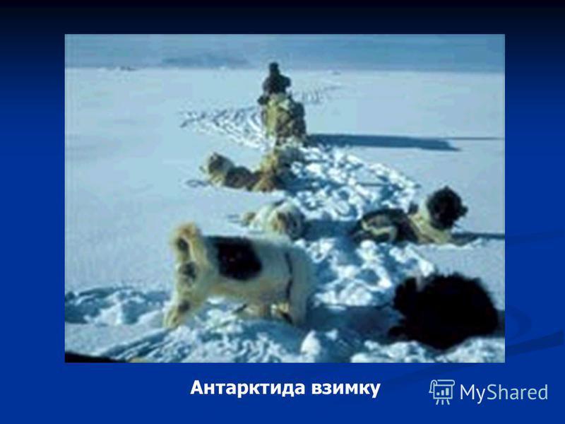 Антарктида взимку