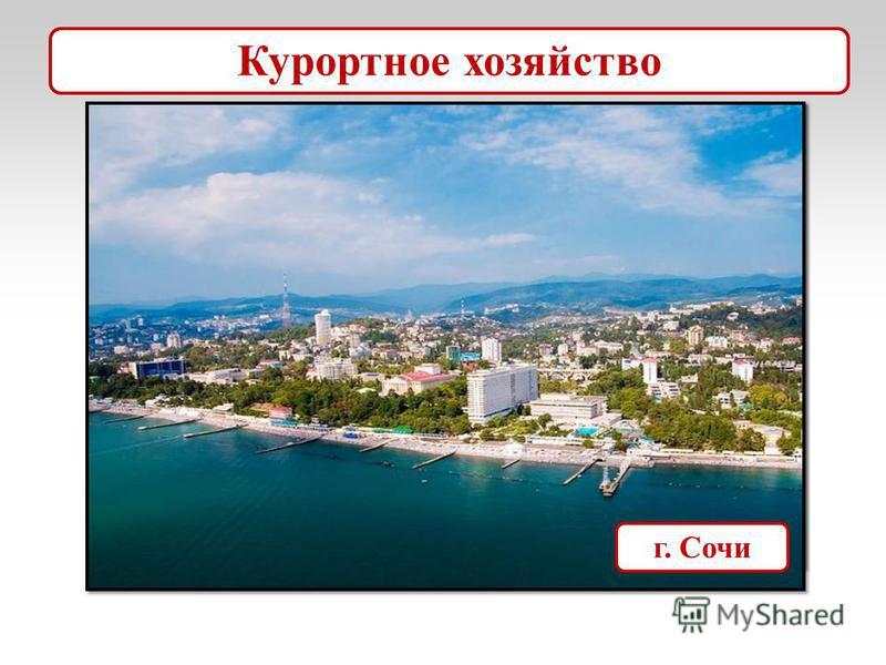 г. Минеральные Воды Ставропольский край Курортное хозяйство г. Сочи