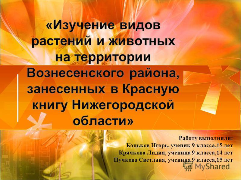 Работу выполнили: Коньков Игорь, ученик 9 класса,15 лет Крячкова Лидия, ученица 9 класса,14 лет Пучкова Светлана, ученица 9 класса,15 лет