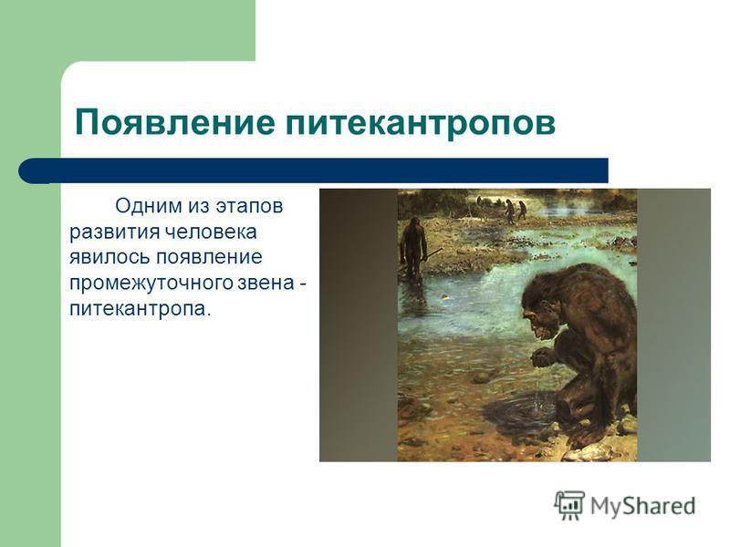 Примерная схема записи в тетради 1. Дриопитеки лесные степные дали начало современным обезьянам австралопитеки («южные обезьяны») приспособились ходить на двух ногах, начали пользоваться примитивными орудиями