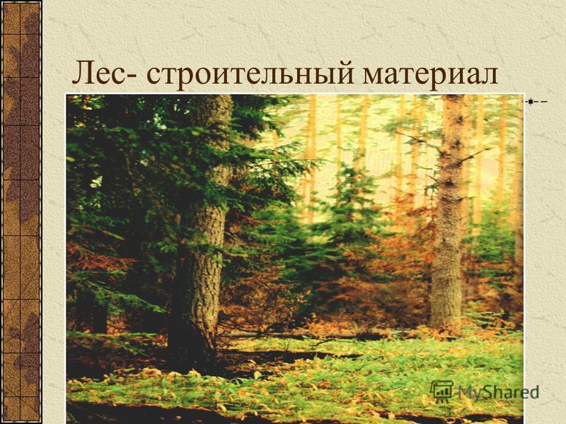 Лес- строительный материал