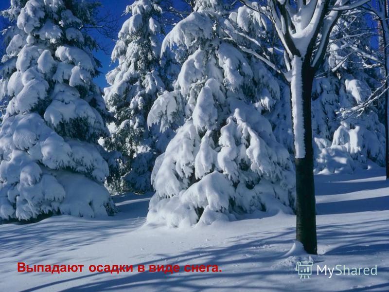 Выпадают осадки в виде снега.