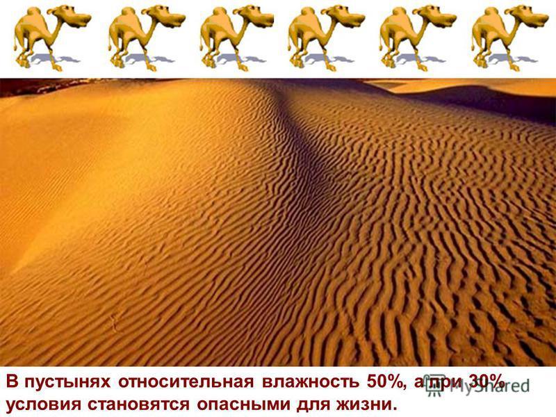 В пустынях относительная влажность 50%, а при 30% условия становятся опасными для жизни.