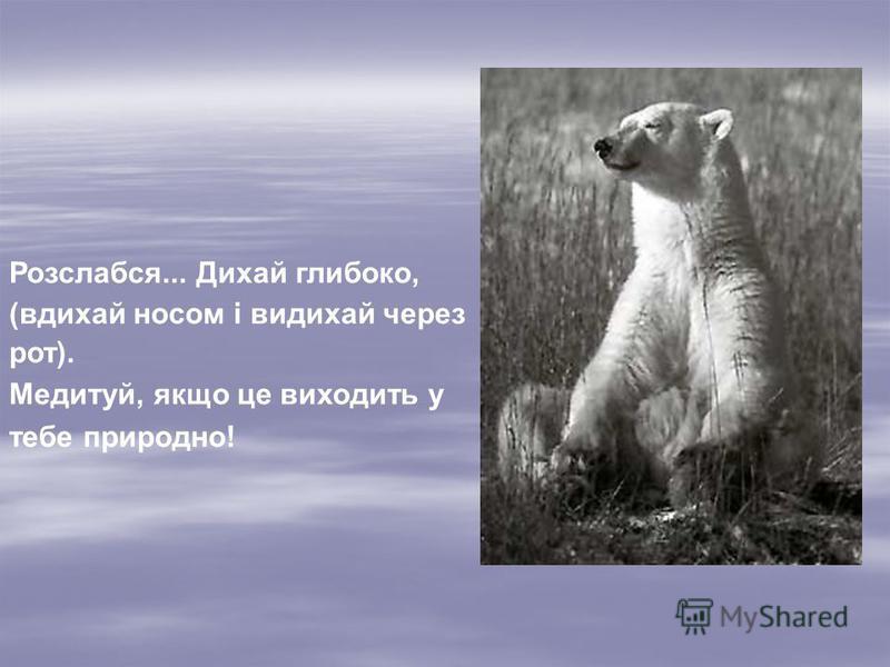 Розслабся... Дихай глибоко, (вдихай носом і видихай через рот). Медитуй, якщо це виходить у тебе природно!