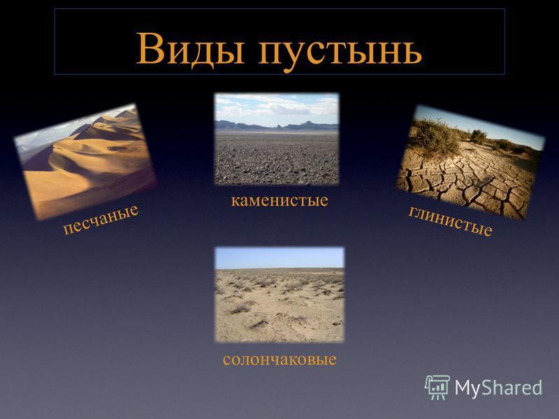 Виды пустынь песчаные каменистые глинистые солончаковые