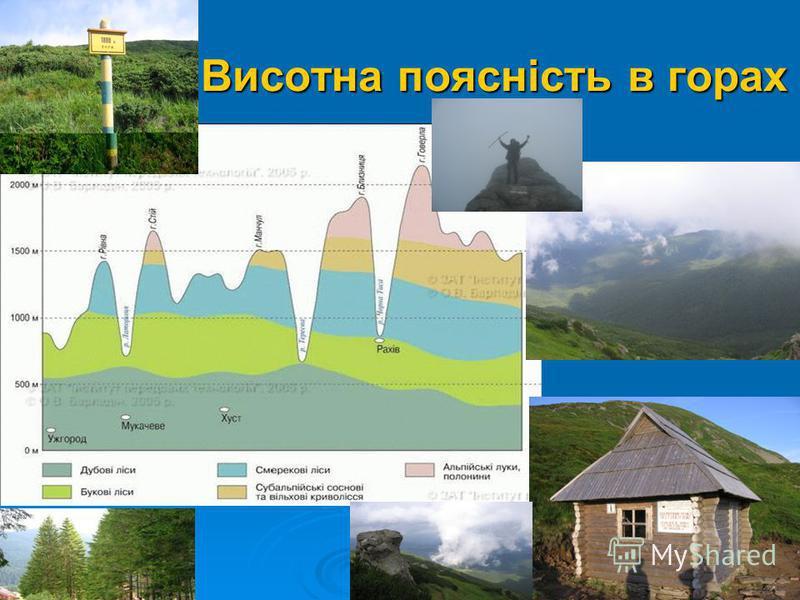 Висотна поясність в горах Висотна поясність в горах