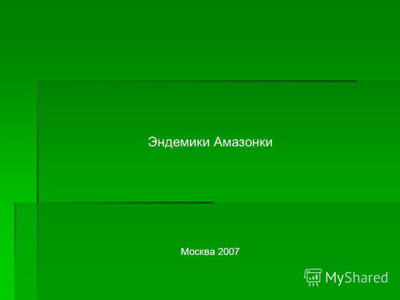 Эндемики Амазонки Москва 2007