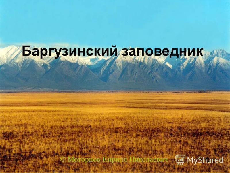 Баргузинский заповедник © Моторнов Кирилл Николаевич