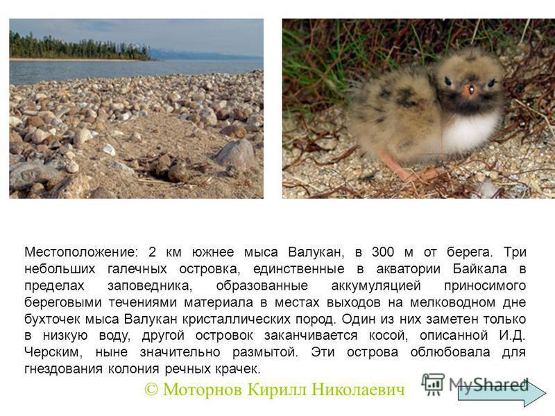 Местоположение: 2 км южнее мыса Валукан, в 300 м от берега. Три небольших галечных островка, единственные в акватории Байкала в пределах заповедника, образованные аккумуляцией приносимого береговыми течениями материала в местах выходов на мелководном