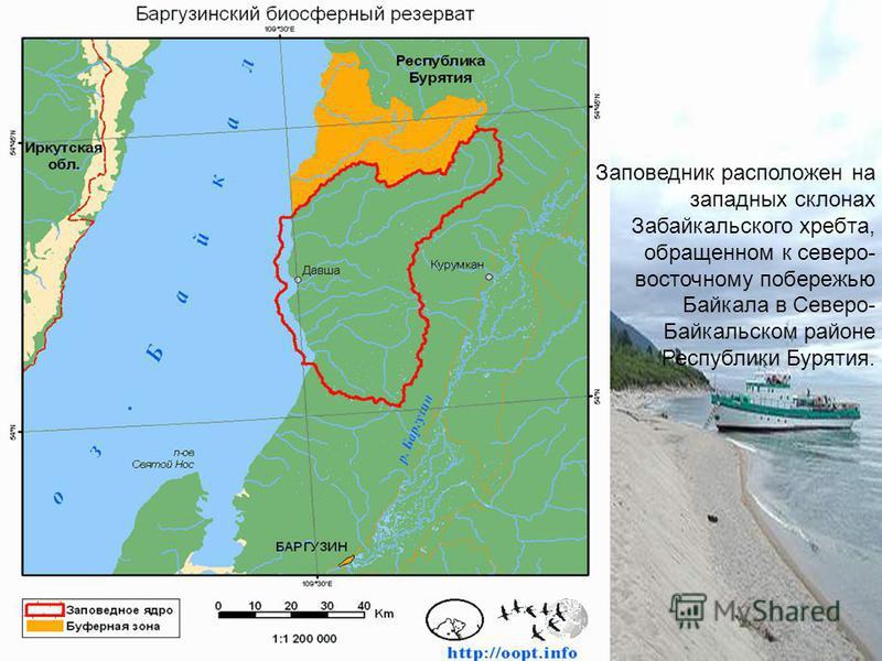 Заповедник расположен на западных склонах Забайкальского хребта, обращенном к северо- восточному побережью Байкала в Северо- Байкальском районе Республики Бурятия.