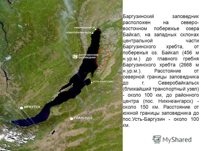 Баргузинский заповедник расположен на северо- восточном побережье озера Байкал, на западных склонах центральной части Баргузинского хребта, от побережья оз. Байкал (456 м н.ур.м.) до главного гребня Баргузинского хребта (2668 м н.ур.м.). Расстояние о