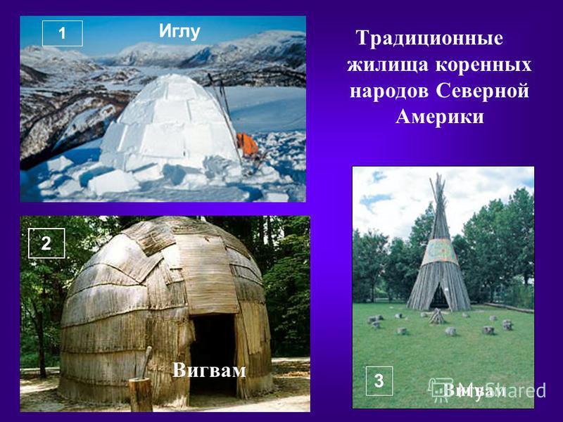 Традиционные жилища коренных народов Северной Америки 1 2 3 Иглу Вигвам