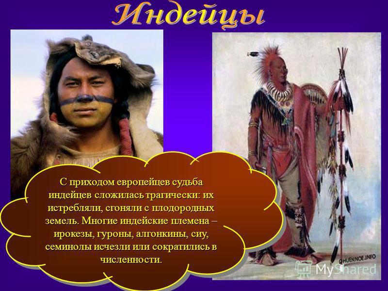 С приходом европейцев судьба индейцев сложилась трагически: их истребляли, сгоняли с плодородных земель. Многие индейские племена – ирокезы, гуроны, алгонкины, сиу, семинолы исчезли или сократились в численности.