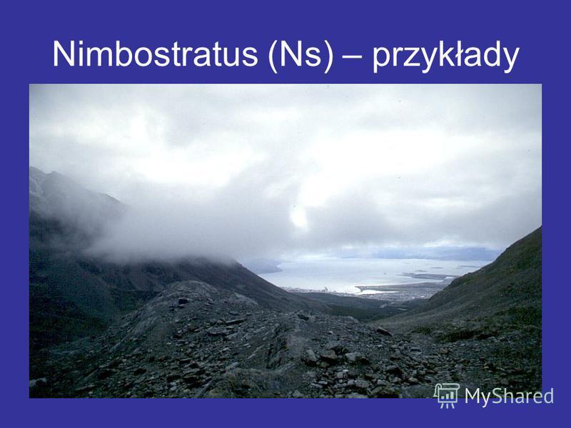 Nimbostratus (Ns) – przykłady