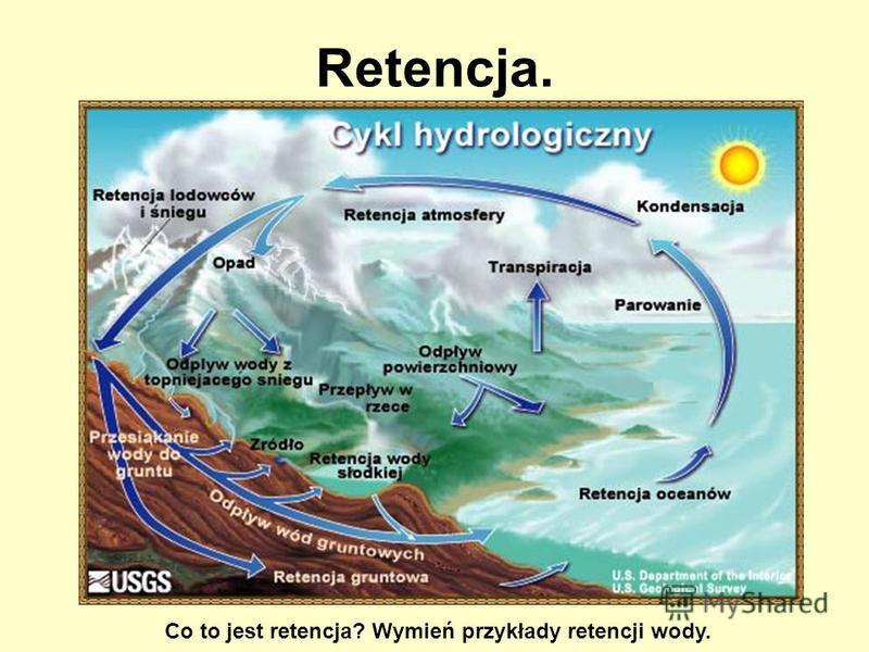 Retencja. Co to jest retencja? Wymień przykłady retencji wody.