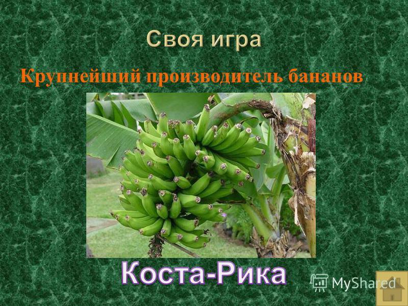 Крупнейший производитель бананов