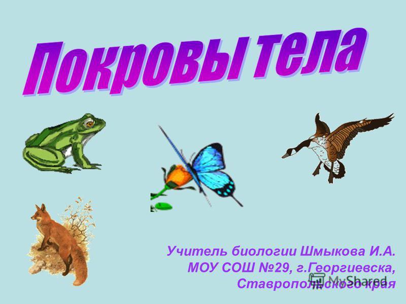 Учитель биологии Шмыкова И.А. МОУ СОШ 29, г.Георгиевска, Ставропольского края