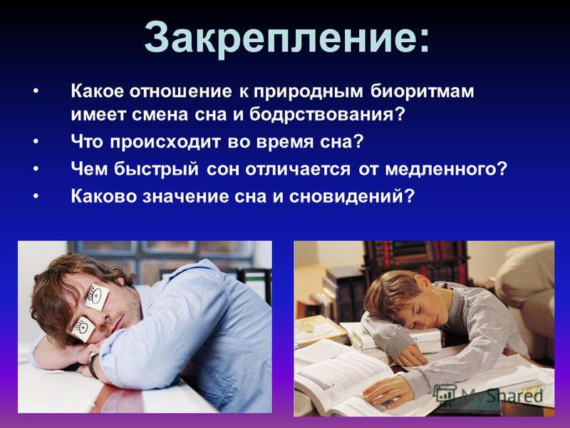 Закрепление: Какое отношение к природным биоритмам имеет смена сна и бодрствования? Что происходит во время сна? Чем быстрый сон отличается от медленного? Каково значение сна и сновидений?