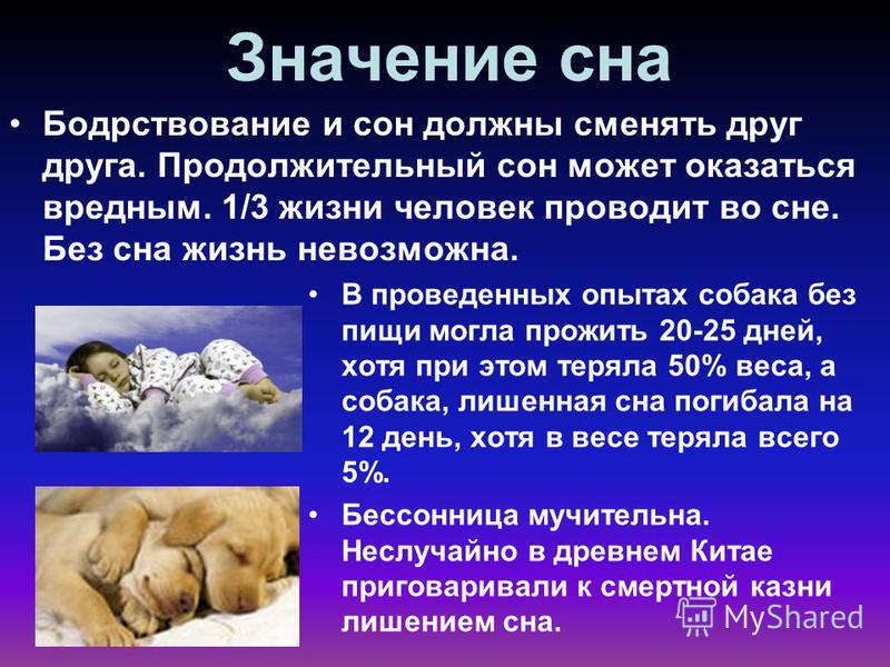 Значение сна Бодрствование и сон должны сменять друг друга. Продолжительный сон может оказаться вредным. 1/3 жизни человек проводит во сне. Без сна жизнь невозможна. В проведенных опытах собака без пищи могла прожить 20-25 дней, хотя при этом теряла