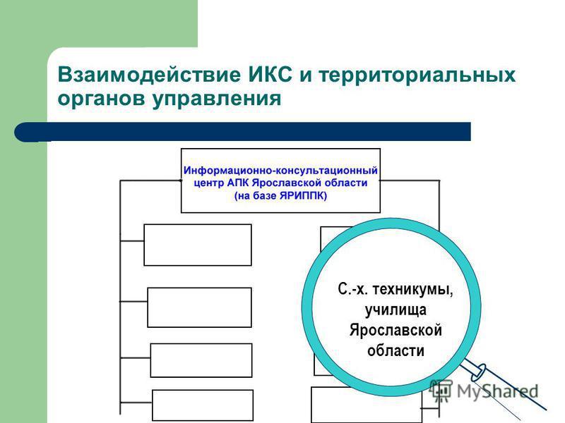 Взаимодействие ИКС и территориальных органов управления НИИ животноводства и кормопроизводства
