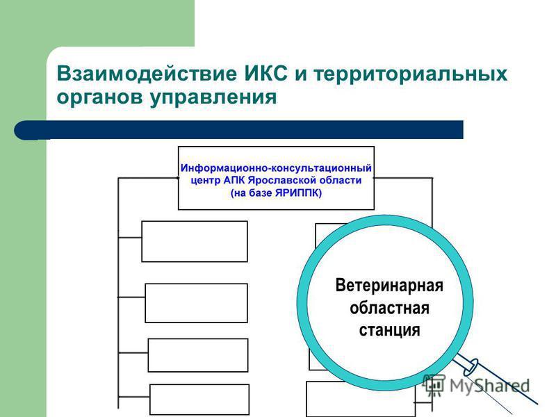 Взаимодействие ИКС и территориальных органов управления Государственная станция агрохимической службы