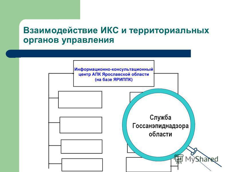 Взаимодействие ИКС и территориальных органов управления Ветеринарная областная станция
