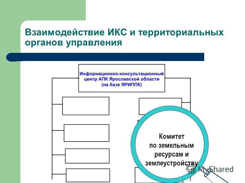 Взаимодействие ИКС и территориальных органов управления Служба Госсанэпиднадзора области