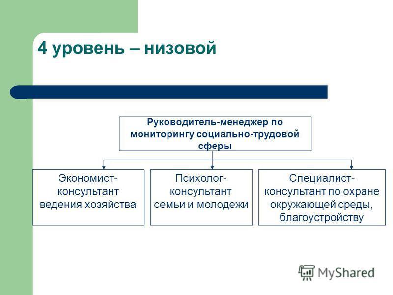 3 уровень - районный Руководитель-менеджер Специалисты- консультанты (по животноводству, растениеводству) Консультант – организатор (экономист)