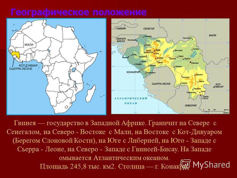 Географическое положение Гвинея государство в Западной Африке. Граничит на Севере с Сенегалом, на Северо - Востоке с Мали, на Востоке с Кот-Дивуаром (Берегом Слоновой Кости), на Юге с Либерией, на Юго - Западе с Сьерра - Леоне, на Северо - Западе с Г