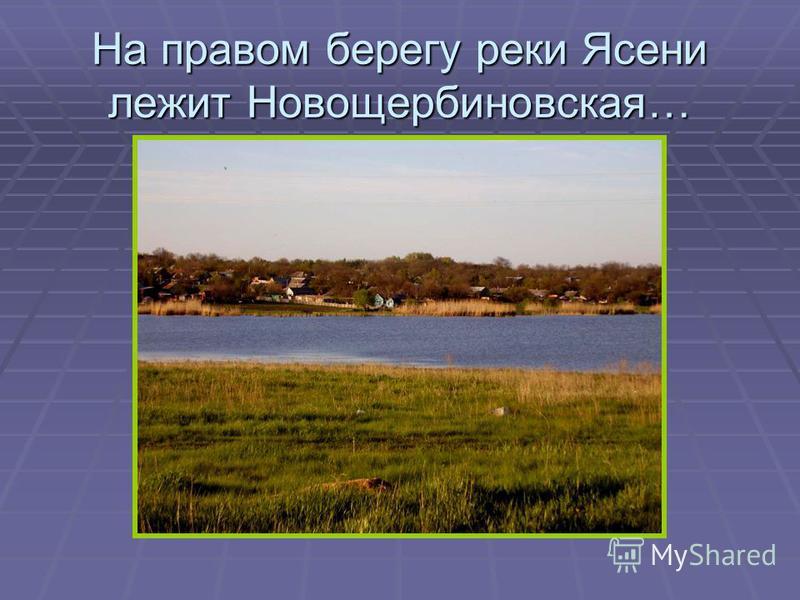 На правом берегу реки Ясени лежит Новощербиновская…