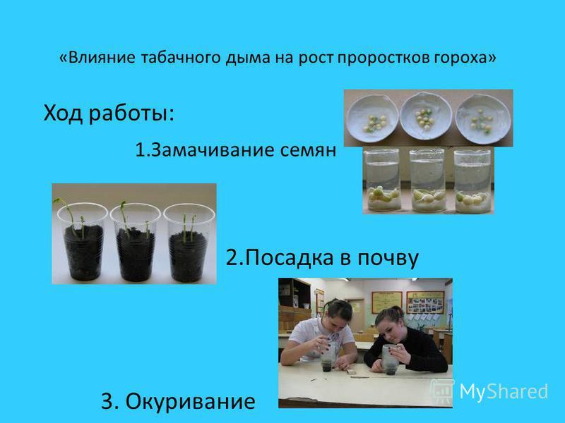 Статистика Ежегодно люди выкуривают 3600 миллиардов сигарет 3,5 миллиарда жителей планеты пропускают через легкие ядовитый дым используя около 5 миллиардов килограммов табака В настоящее время в России, в подростковой среде, курит каждый второй мальч