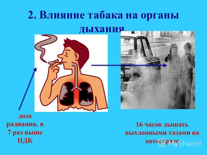 1. Влияние табачного дыма на кровь и мозг. После выкуривания одной сигареты у курящих, сужаются кровеносные сосуды, наступает кислородное голодание, которое длиться около часа. Погибают клетки мозга, нарушается память.