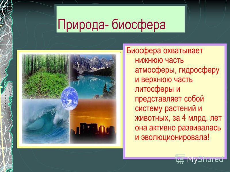 Природа- биосфера Биосфера охватывает нижнюю часть атмосферы, гидросферу и верхнюю часть литосферы и представляет собой систему растений и животных, за 4 млрд. лет она активно развивалась и эволюционировала!