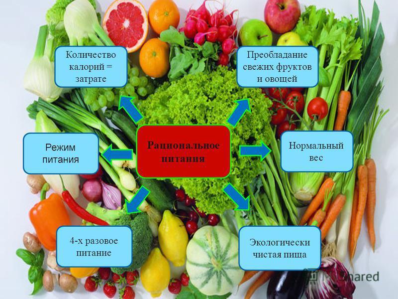 Количество калорий = затрате Преобладание свежих фруктов и овощей Режим питания Рациональное питания Нормальный вес 4-х разовое питание Экологически чистая пища