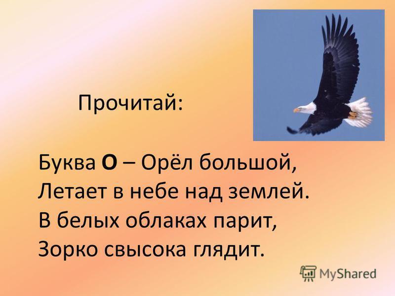 Прочитай: Буква О – Орёл большой, Летает в небе над землей. В белых облаках парит, Зорко свысока глядит.