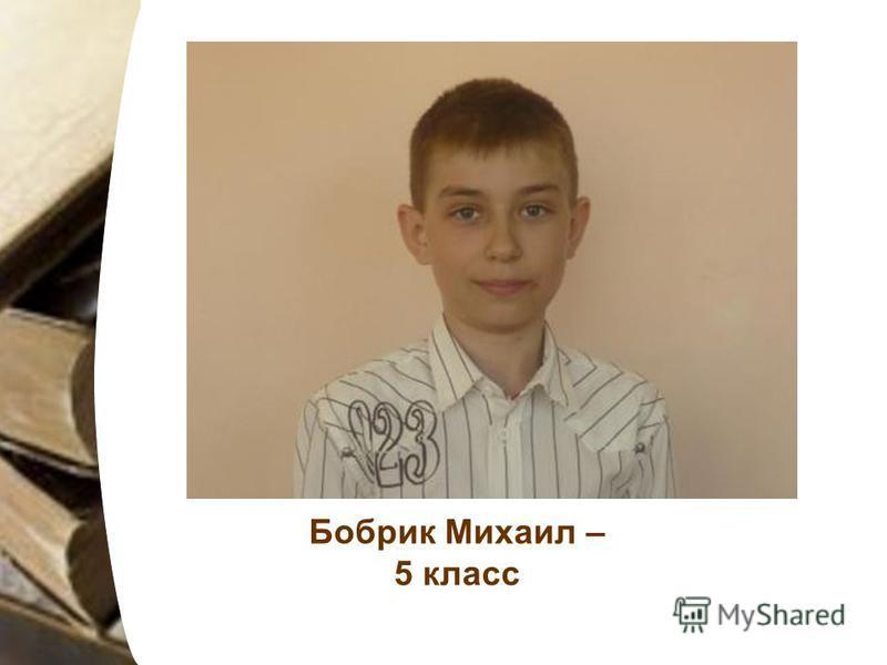Бобрик Михаил – 5 класс