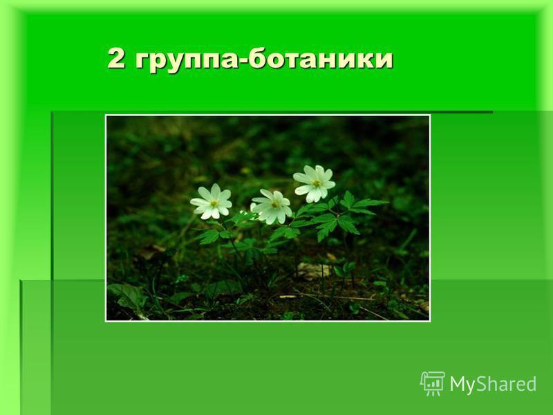 2 группа-ботаники 2 группа-ботаники