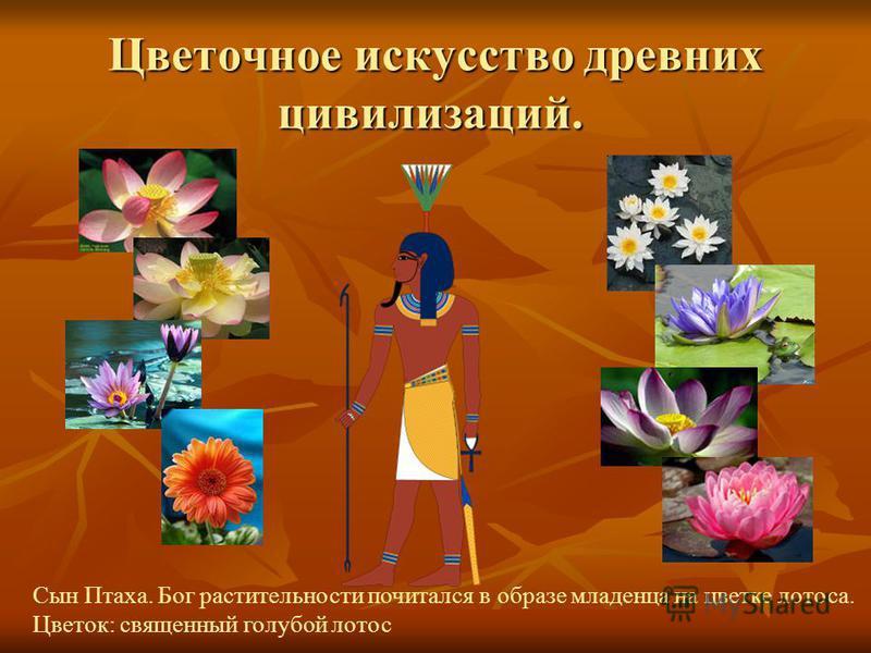 Что такое флористика. Флористика – разновидность декоративно –прикладного искусства, которое воплощается в создание флористических работ (букетов, композиций, панно, коллажей) из разнообразных природных материалов (цветов, листьев, трав, ягод, плодов