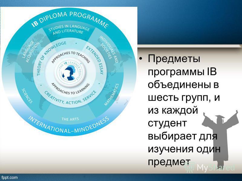 Предметы программы IB объединены в шесть групп, и из каждой студент выбирает для изучения один предмет