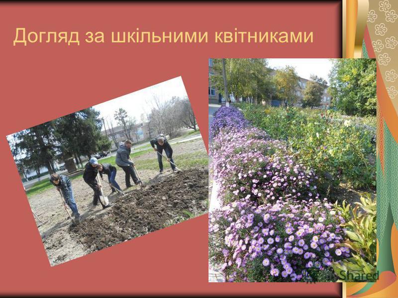 Догляд за шкільними квітниками