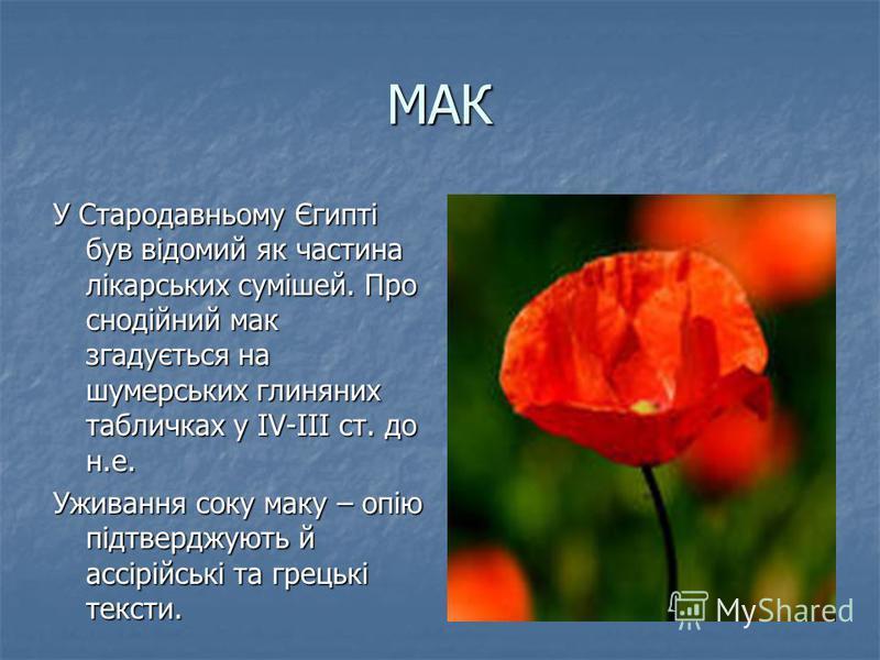 МАК У Стародавньому Єгипті був відомий як частина лікарських сумішей. Про снодійний мак згадується на шумерських глиняних табличках у IV-III ст. до н.е. Уживання соку маку – опію підтверджують й ассірійські та грецькі тексти.
