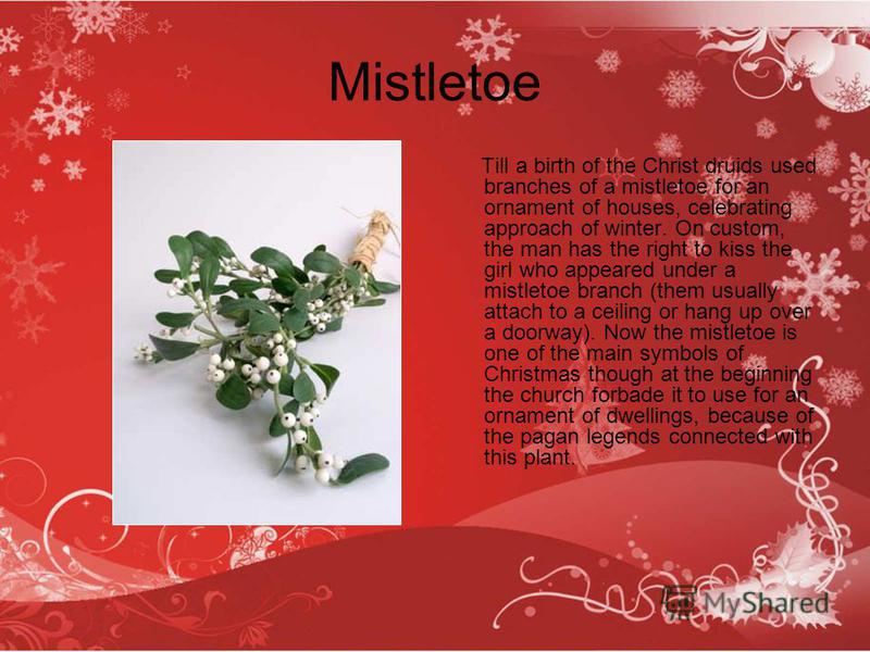 Mistletoe Till a birth of the Christ druids used branches of a mistletoe for an ornament of houses, celebrating approach of winter. On custom, the man has the right to kiss the girl who appeared under a mistletoe branch (them usually attach to a ceil